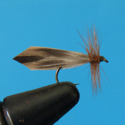 sedge brun hackle roux