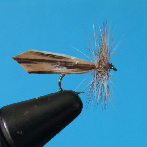 sedge brun hackle gris